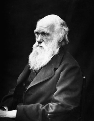 Charles Darwin 1869 Portrait Poster Photo Famous People Posters Photos 11x14