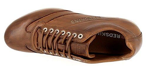 Redskins Taille Sabbag Homme Chaussure Marron vqvPrw