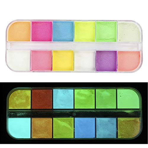 Glow in The Dark Powder,12 Colors Safety Luminous Pigment Powder for DIY Nail Art Resin Slime Nails Music Festivals Concerts Halloween,luminescent Perfect for Arts Crafts,Kids Party Decoration