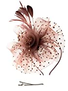Fascinators Hat for Women Tea Party Headband Kentucky Derby Wedding Cocktail Flower Mesh Feathers Hair Clip