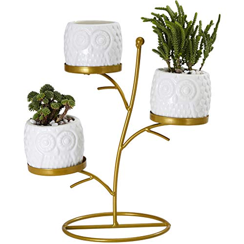 FLOWERPLUS Small Owl Succulent Planter Pots, 3 Pack 2.75 Inch White Ceramic Decorative Cactus Flower Plant Pot with Tree Tier Metal Stand for Indoor Outdoor Home Office Garden Kitchen D cor 3PP024