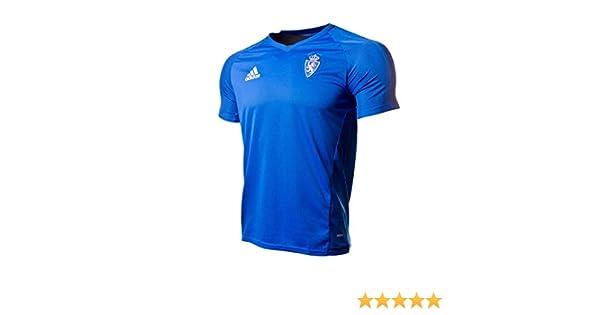 Adidas Rz TRG JSY Camiseta Línea Real Zaragoza, Hombre, Azul, M: Amazon.es: Deportes y aire libre