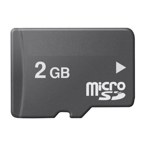 RONSHIN TopOne 2 GB MicroSD Memory Card (Bulk Packaged)