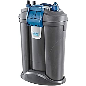 OASE Indoor Aquatics Filtosmart Thermo 300