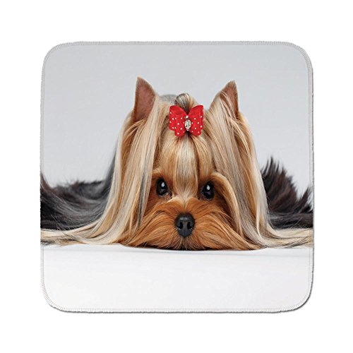 Cozy Seat Protector Pads Cushion Area Rug,Yorkie,Lying Yorkshire Terrier with Cute Ribbon Yorkie Love Portrait of a Dog Decorative,Pale Caramel Sand Brown,Easy to Use on Any Surface ()