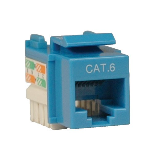 TRIPP LITE Cat6/5e Blue Wallplate Keystone Jack, Punch-Down/RJ45 F TAA GSA - Jack Bl Cable Cat6