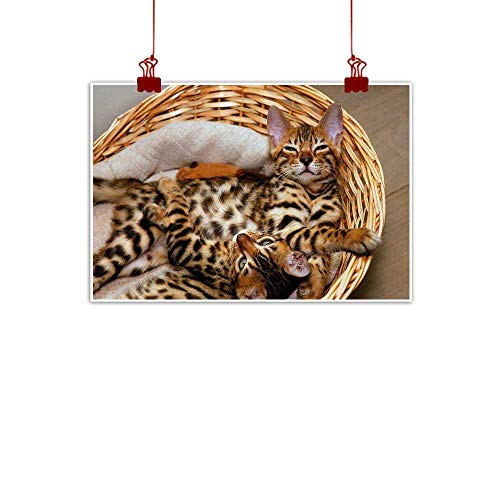 Wall Art Print Home Decor Kitten,Little Bengal Cats in Basket Cuddly Purebred Kitties Domestic Feline,Brown Pale Brown Beige 36