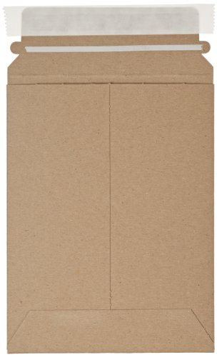 "Aviditi RM1K Self Seal Flat Mailer, 8"" Length x 6"" Width, Kraft (Case of 100)"