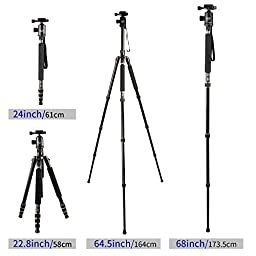 Mactrem Camera Tripod Alluminum Alloy Travel Tripod Portable Detachable Monopod,64.5 inch,360 Degree Ball Head,1/4 Quick Release Plate with Carrying Tripod Bag For Canon Sony Nikon DSLR Cameras