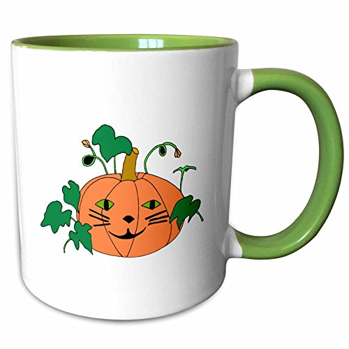3dRose CherylsArt Holidays Halloween - Digital painting of a cute pumpkin with a cat face for Halloween - 15oz Two-Tone Green Mug (mug_223207_12)]()