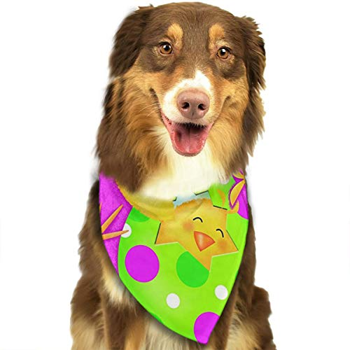 FRTSFLEE Dog Bandana Easter Greetings Chicks Scarves Accessories Decoration for Pet Cats and Puppies ()