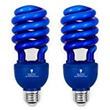 2 Pack BlueX CFL Blue Light Bulbs 24W - 100-Watt Equivalent - E26 Spiral Replacement Bulbs - Easy Install Decorative Illumination - for Indoor or Outdoor - DJ, Colored CFL, Party, Halloween Bulbs