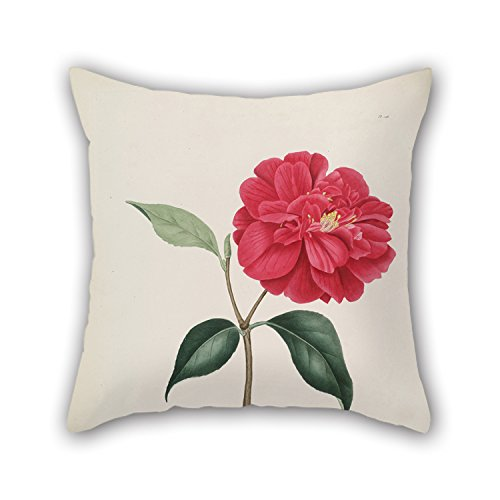 MeiGi Throw Pillow Covers 20 X 20 Inches / 50 By 50 Cm(2 Sides) Nice Choice For Car Seat Girls Lover Christmas Husband Adults Flower