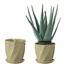 KITADIN Garden Pot 3 Pack Degradable Decorative Planter Eco-Friendly Plant Fiber Pots for Indoor Plants, Herbs, Seed Nursery and Succulent