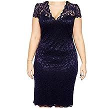 Nanxson(TM) Women's Short Sleeve Lace V Neck Dress Plus-size LYQ0150