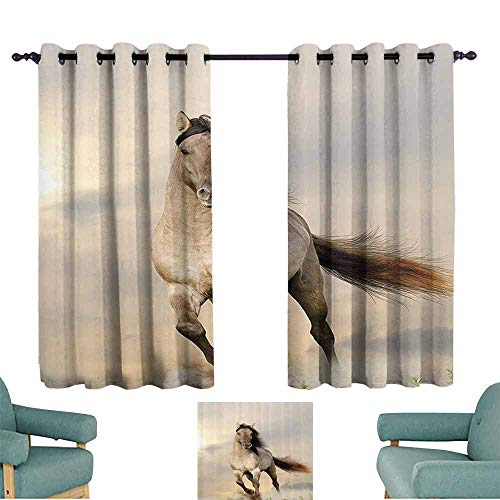 DILITECK Printed Curtain Animal Decor Collection Wild Young Stallion Horse Running at Sunset Male Power Nake Muscular Physique Nobility Photo Thermal Insulated Tie Up Curtain W72 xL72 Biege