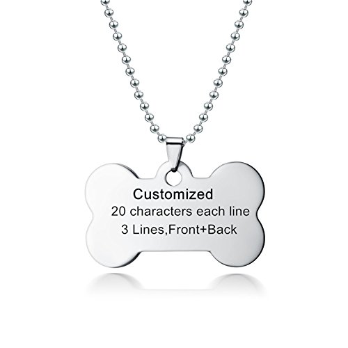LiFashion LF Stainless Steel Personalized Name Date ICE Custom Dog Tag Bone Necklace Pet ID Tags Pendant for Dog Cat Pets Lover Jewelry,Silver,Gold,Black,Blue Free Engraving Customized ()