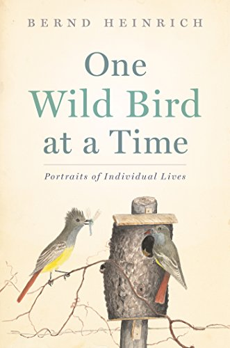 One Wild Bird at a Time: Portraits of Individual Lives (Best Bird Food For Wild Birds)