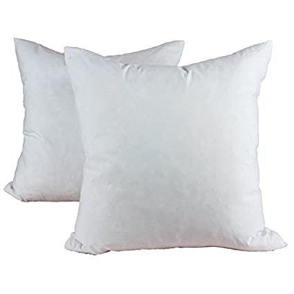 Amazon Homey Cozy 40 X 40 Down And Feather Pillow Insert 40 Simple 20 Feather Pillow Inserts