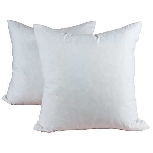 Filling Form (Homey Cozy 20 x 20 Down and Feather Pillow Insert - 100% Waterfowl Feather Stuffer Square Sham Pillow Form Filling Decorative Couch Cushion - Set of 2)