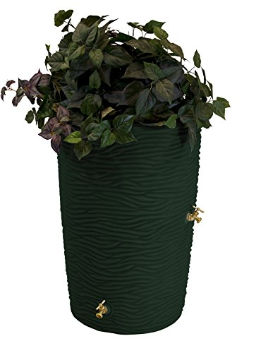 Rain Urn (Good Ideas Imp-L50-GRN Impressions Palm Rain Barrel, 50 Gallon, Green)