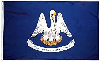 product image for 3x5' Louisiana 2ply Polyester State Flag