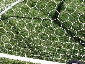 Hexagonal Net Soccer (First Team 3mm Hexagonal Soccer Net)