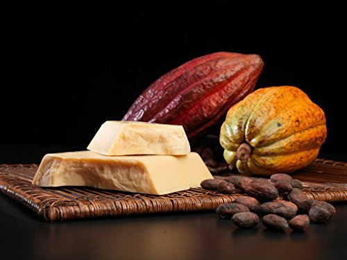 Top 8 Food Grade Organic Cocoa Butter
