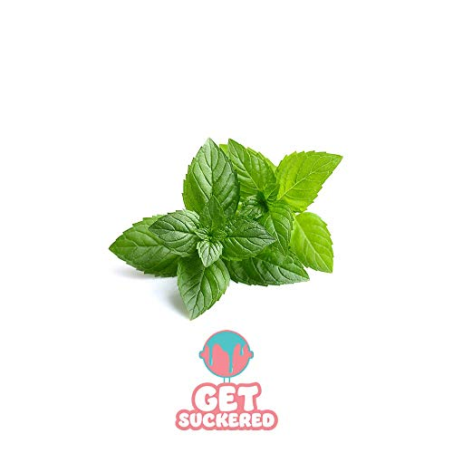 Peppermint Blend Flavoring Concentrate (PG) 30 ml