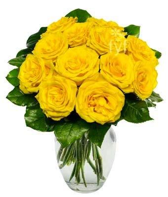 Amazon Flowers One Dozen Yellow Roses Fresh Cut Format