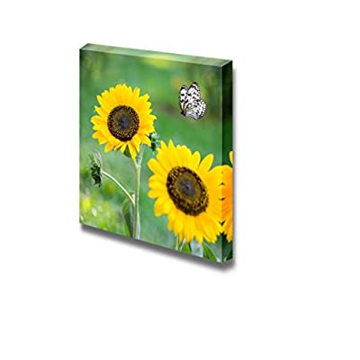 Canvas Prints Wall Art - Sunflower in Spring with Butterfly - 12