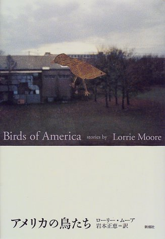 アメリカの鳥たち