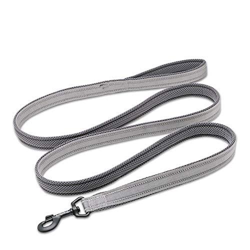 Free Stock Clipart - Solarphoenix Soft Padded Mesh Dog Leash Reflective Nylon Walking Training Dog Leads Stock Running Dog Pet Leash 5 Color 110cm Hot,Gray,L 3.0cmX110cm