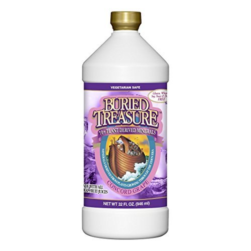 Buried Treasure Colloidal Minrls Cncrd Gr 32 Fz