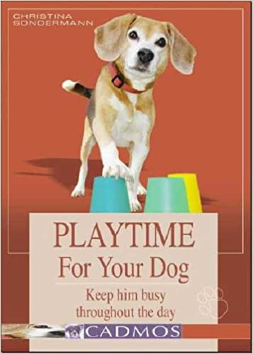 Book Playtime for Your Dog: Keep Him Busy Throughout the Day