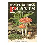 img - for NON-FLOWERING PLANTS-A GOLDEN NATURE GUIDE-(OVER 400 SPECIES IN FULL COLOR) book / textbook / text book
