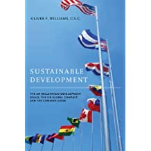 Sustainable Development: The UN Millennium Development Goals, the UN Global Compact, and the Common Good (ND Houck Series Business Ethics)