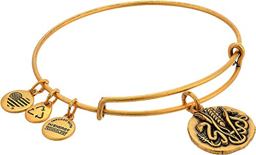 Ruler Serpent - Alex and Ani Women's Ruler of The Woods - Healer¿s Charm Reed Bangle Gold One Size