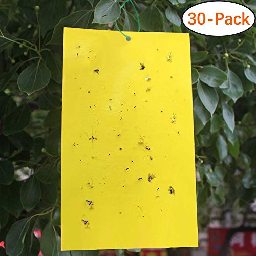 Faicuk 30-Pack Yellow Sticky Fly Insect Traps for Fungus Gnats, Aphids, White Flies, Leaf Miners, Thrips, Other Flying Plant Insects - 6x8 Inches, Twist Ties Included
