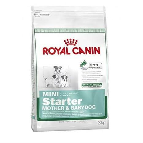 Amazon.com: Royal canin mini starter mother & babydog pienso ...