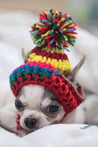 Hat Stationery (Chihuahua notebook: Blank lined journal: Cute Chihuahua in a hat)