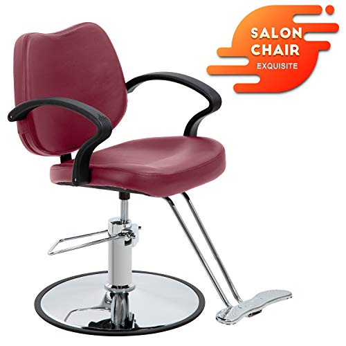 Salon Chair Barber Chair Styling Heavy Duty Hydraulic Pump Barber Chairs Beauty Salon Chair Shampoo Barbering Chair for Hair Stylist Women Man Salon Equipment