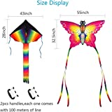 SINGARE Large Rainbow Delta and Butterfly Kites 2