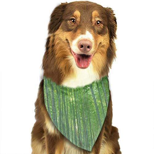 (Pet Scarf Dog Bandana Bibs Triangle Head Scarfs Green Bamboo Forest Accessories for Cats Baby)