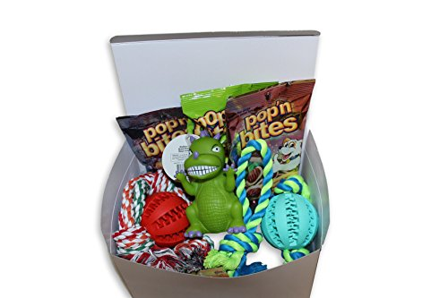 Big Dog Care Package New Pet Gift box (Dog Treat Gift Baskets)