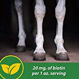 Farnam HB 15 Hoof Supplement, Supports Healthy hoof