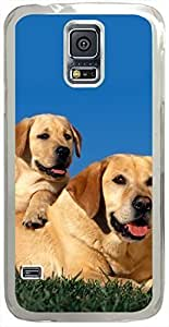 Animals & Birds Yellow-Labradors Cases for Samsung Galaxy S5 I9600 with Transparent Skin