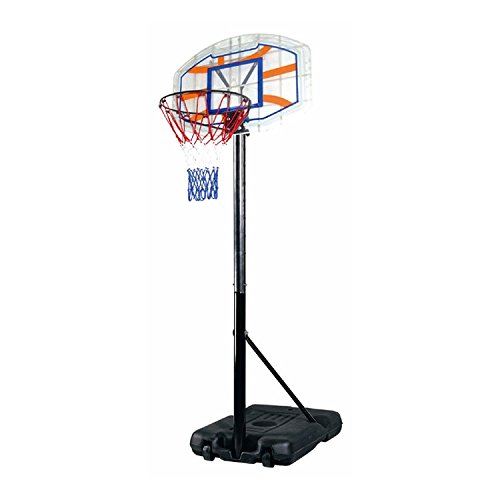 Colibrì Hummingbird–Column Basketball Deluxe