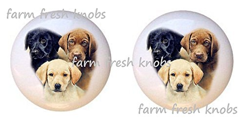 SET OF 2 KNOBS - Three of a Kind Lab Dog - Dogs - DECORATIVE Glossy CERAMIC Cupboard Cabinet PULLS Dresser Drawer KNOBS - Kinder Kitchen Cupboard