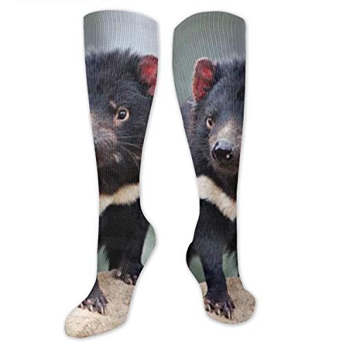 (KIOT156 Tasmanian Devil Compression Socks Knee High Socks Training Socks Soccer Socks for Men & Women - Best Sports Socks for Running,Nurses,Sports,Flight Travel)